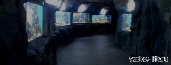 Аквариум Подводный грот, Ялта