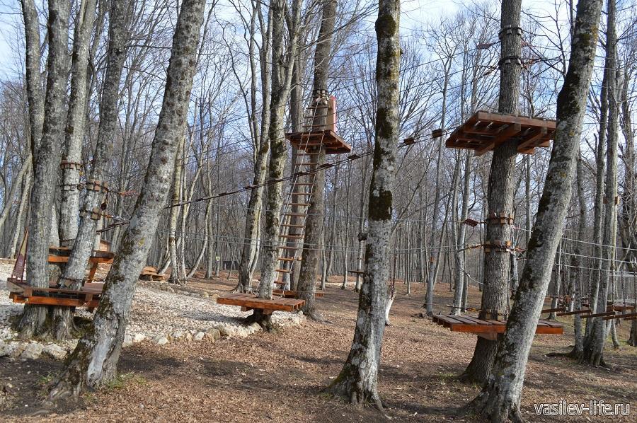 Веревочный парк развлечений «Тетис» в Даховской (10)