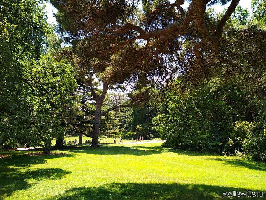Воронцовский парк в Алупке