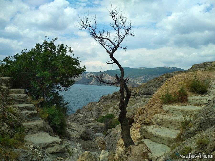 Гора и мыс Алчак-Кая в Судаке (тропа здоровья) (14)