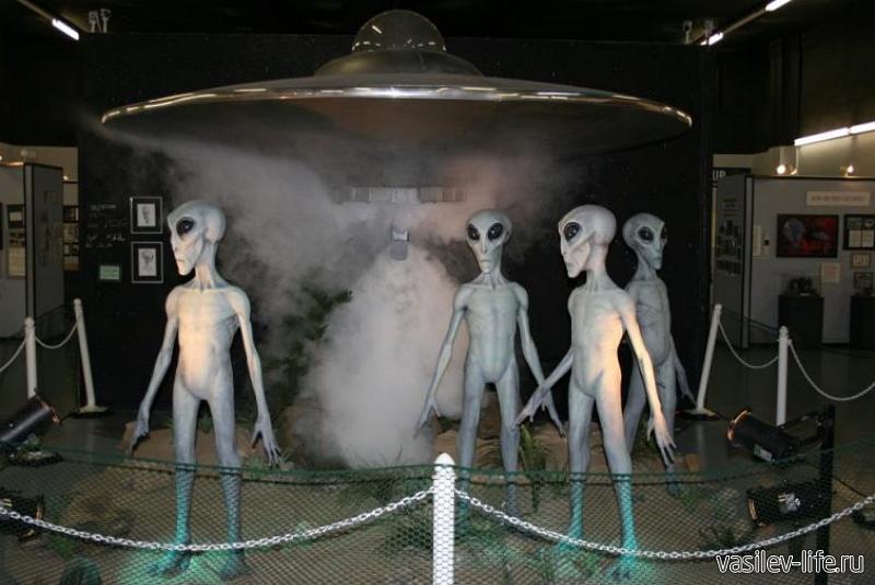 Дельфинарий «Акватория», Ялта (музей НЛО)