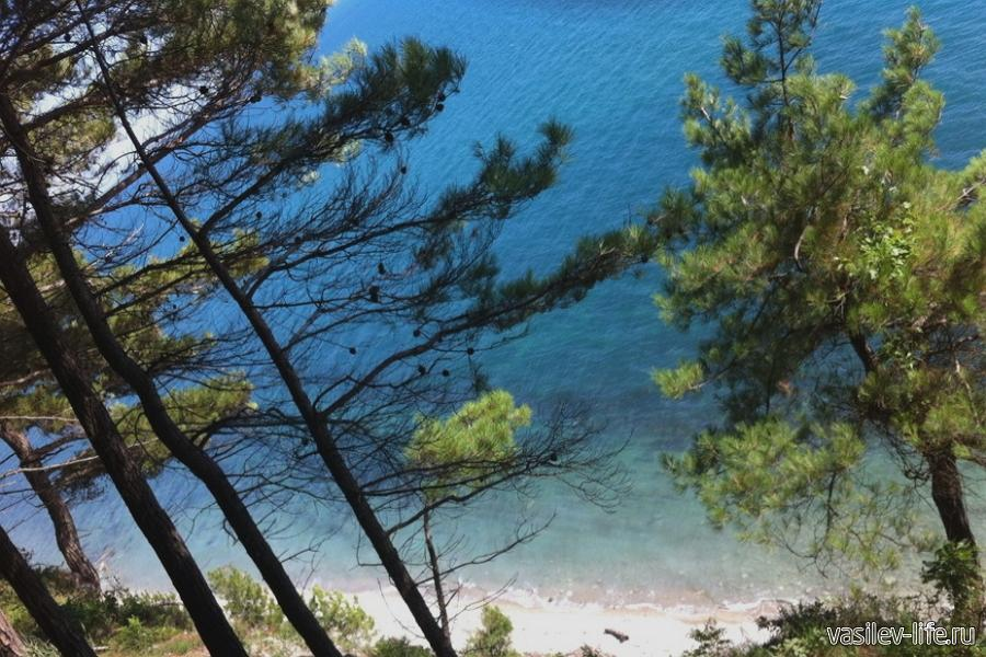 Кемпинг «Сосновый берег» в Архипо-Осиповке