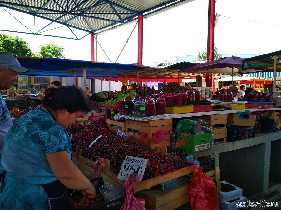 В июне продают вишню, абрикосы, малину