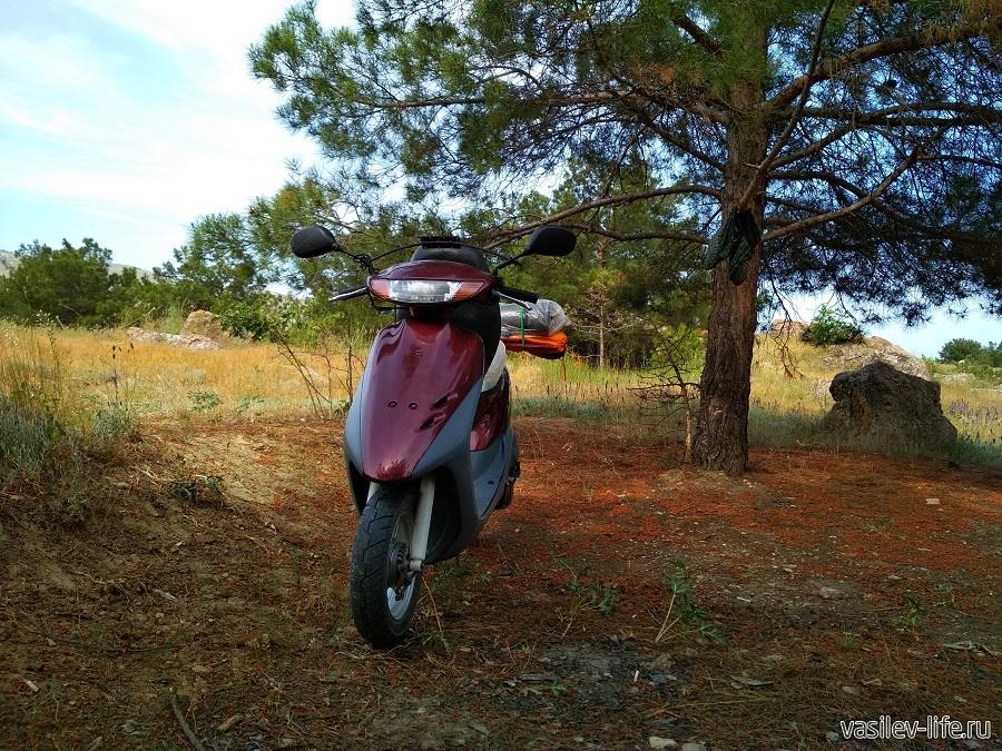 Мой верный конь (вездеход) Хонда Дио