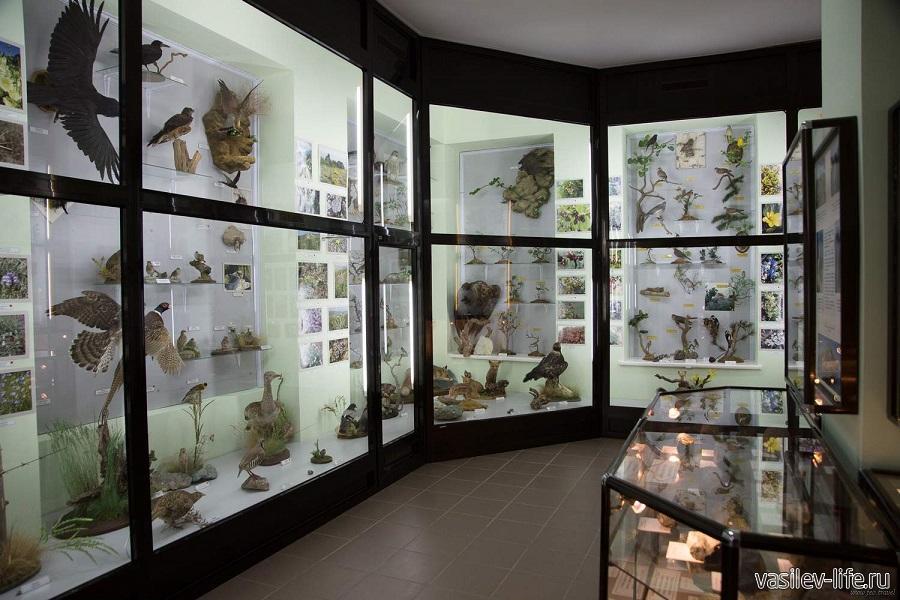 Музей «Природы Кара-Дага»