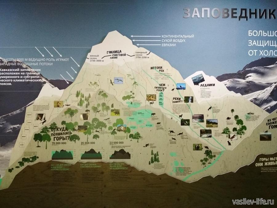 Музей Кавказского биосферного заповедника в Гузерипле (Адыгея) (11)