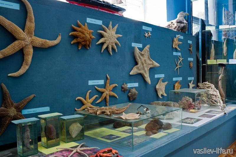 Музей океанографии в Керчи5