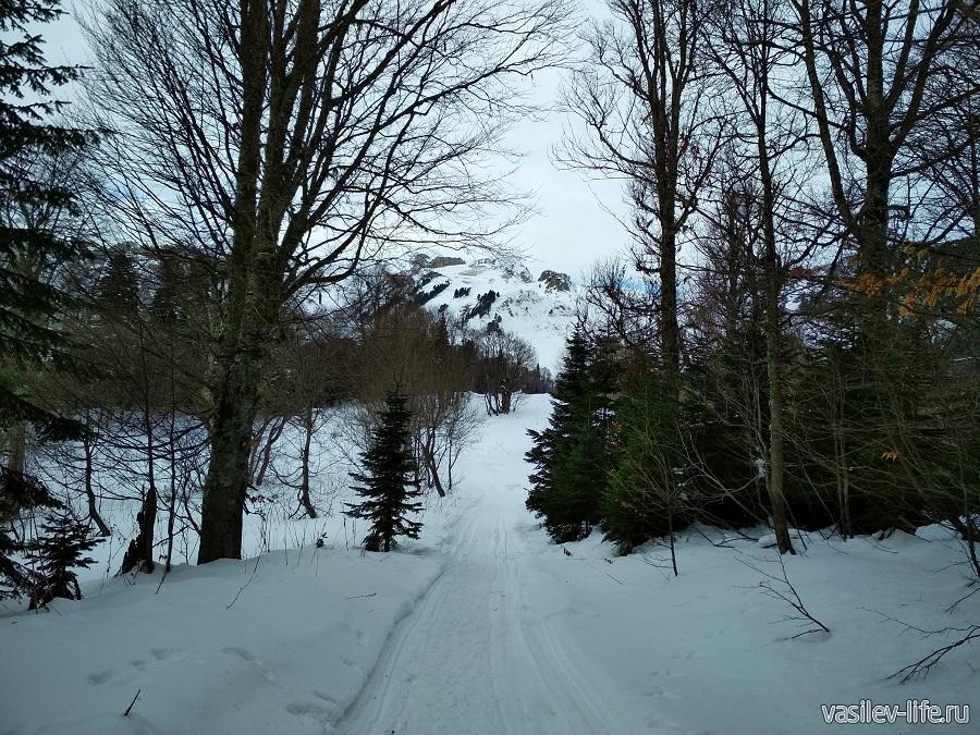 На снегоходе, можно прокатьться сюда 3