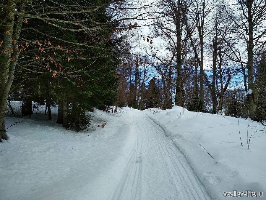 На снегоходе, можно прокатьться сюда
