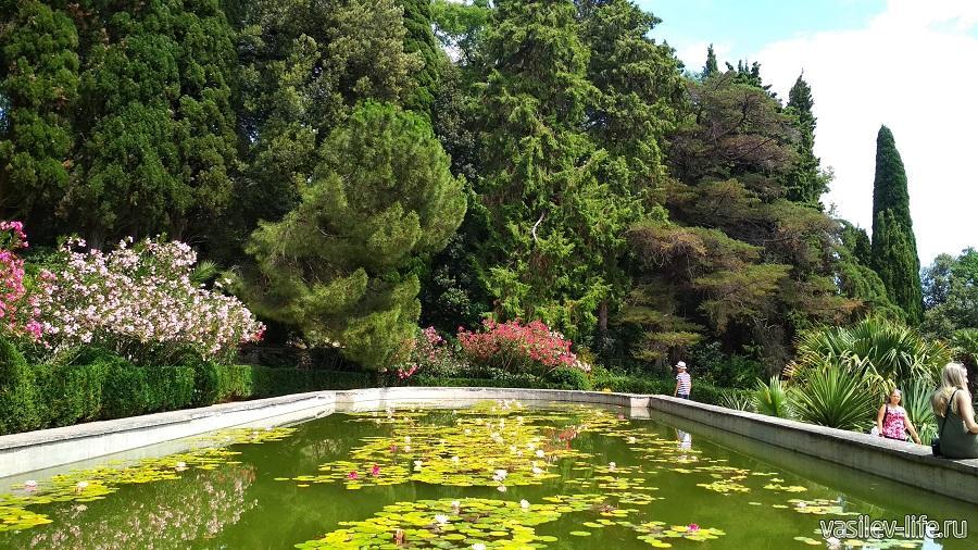 Никитский ботанический сад (29)