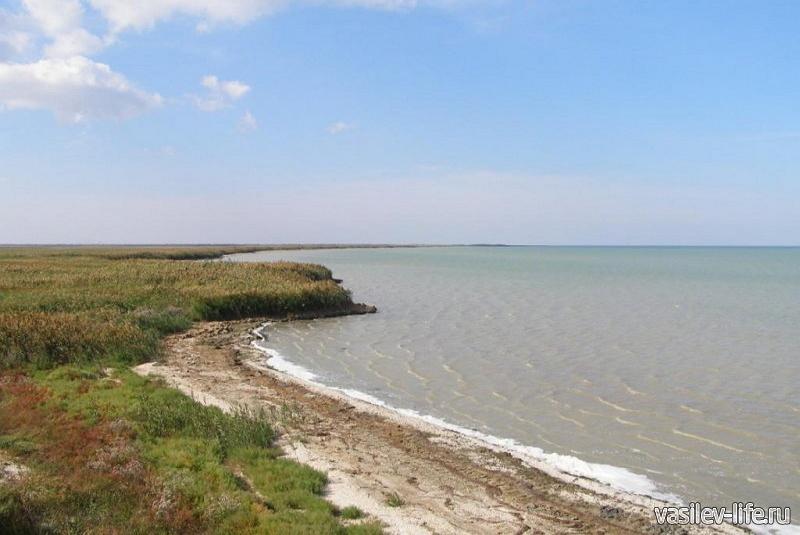Озеро Сиваш в Крыму 4
