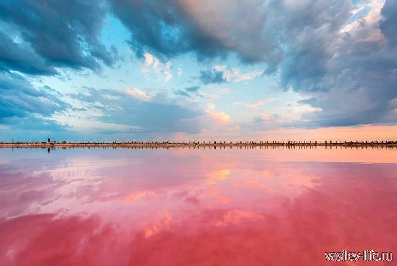 Озеро Сиваш в Крыму 6