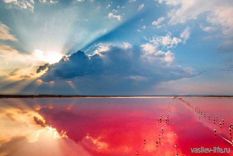 Озеро Сиваш в Крыму 8
