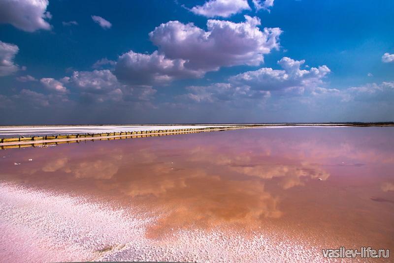 Озеро Сиваш в Крыму 9