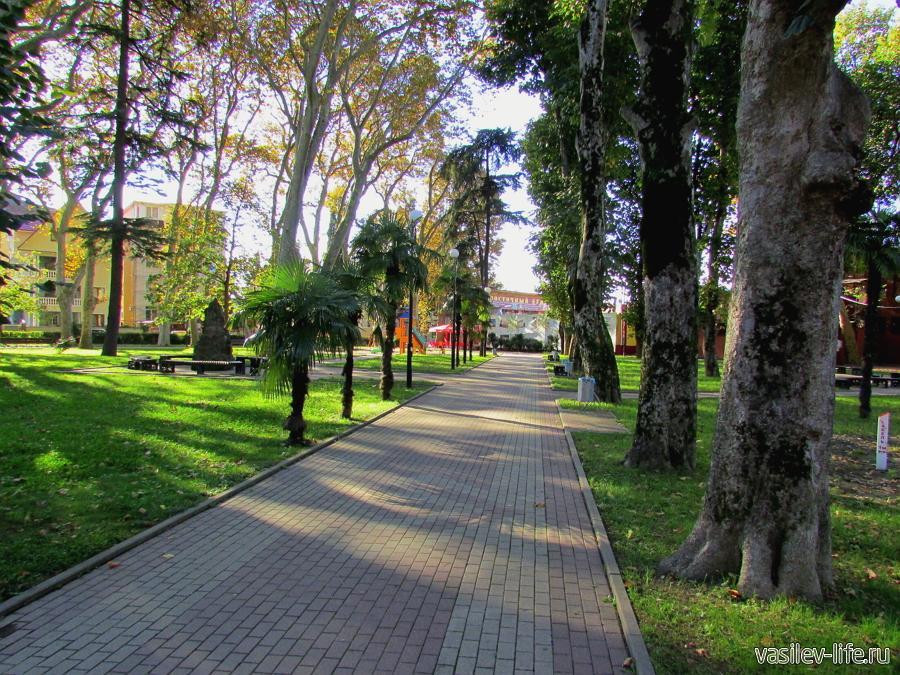 Парк Бестужева в Адлере