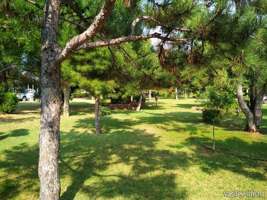 Парк Фрунзе (Евпатория) (7)