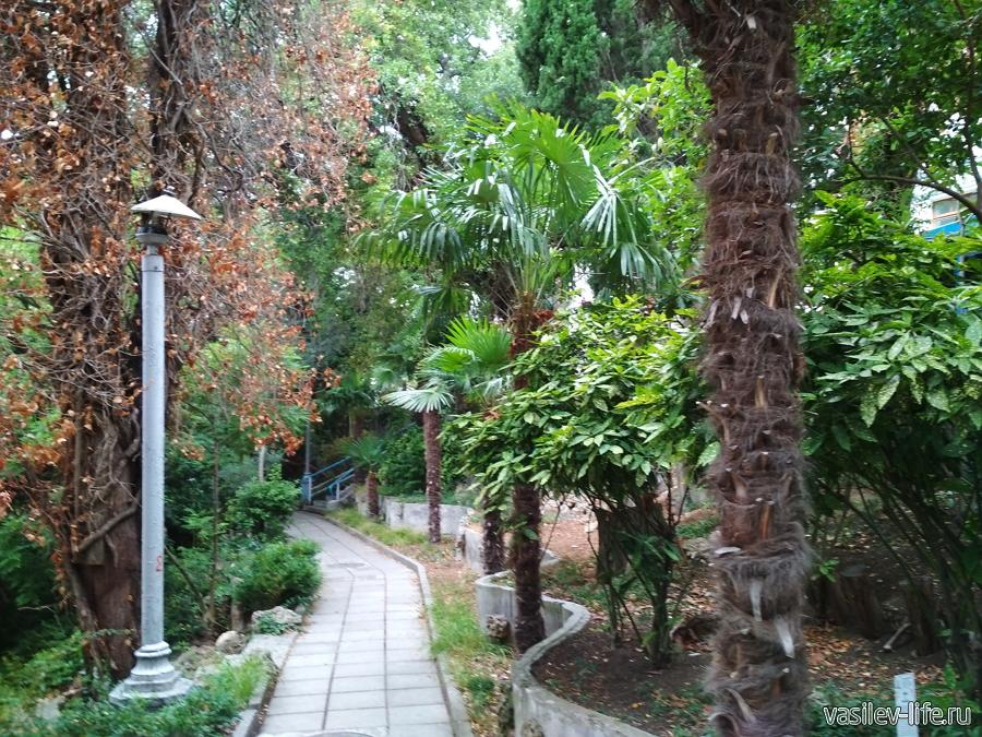 "Парк санатория ""Дюльбер"" в Кореизе"