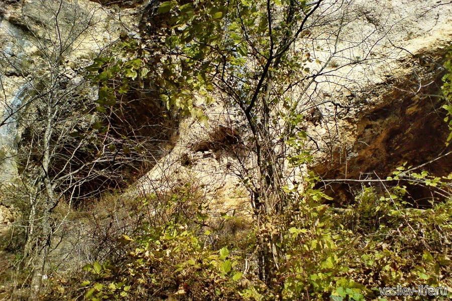 Пещера Киик-Коба
