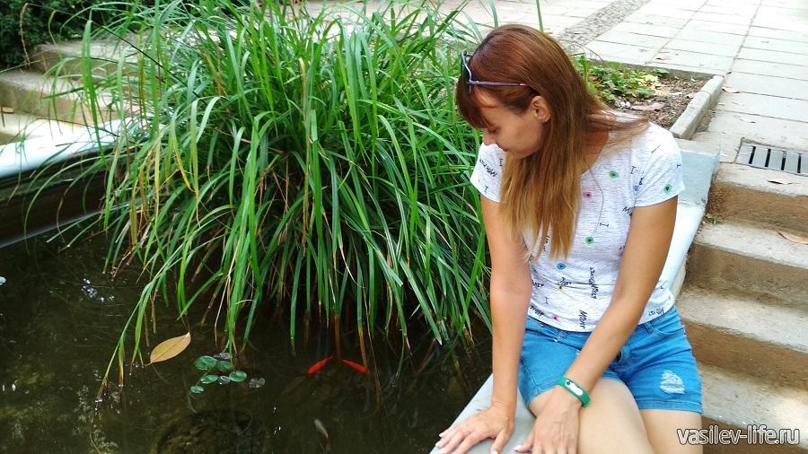 Плавают рыбки