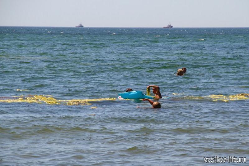 Пляж «Черепашка» в Керчи 8