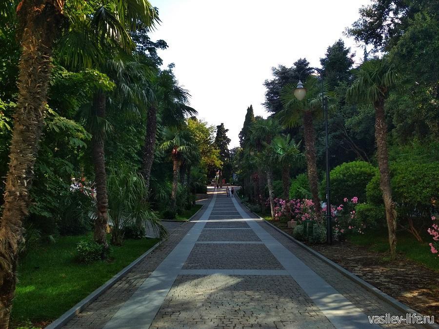 Приморский парк в Ялте (6)