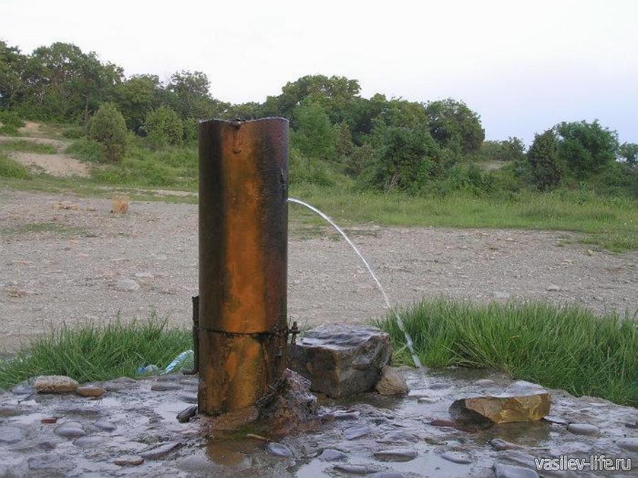 Сероводородный источник в заповеднике «Утриш»