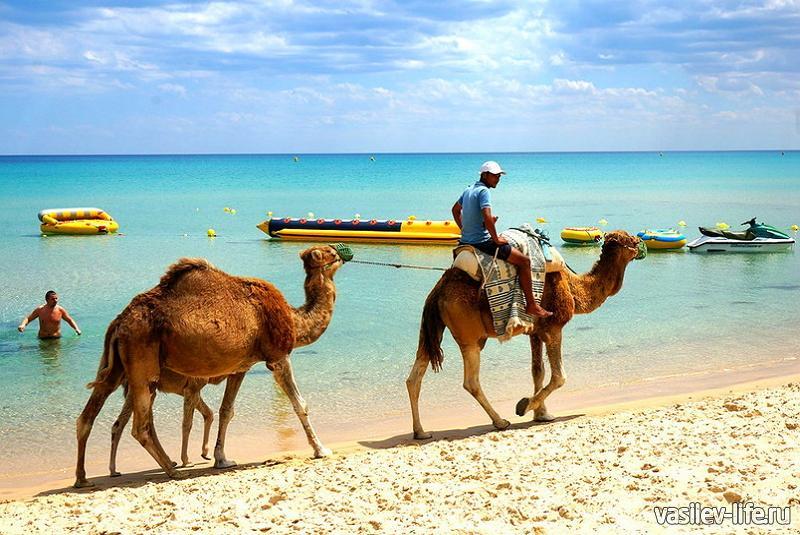 Тунис осенью