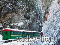 Узкоколейная железная дорога в Гуамском ущелье