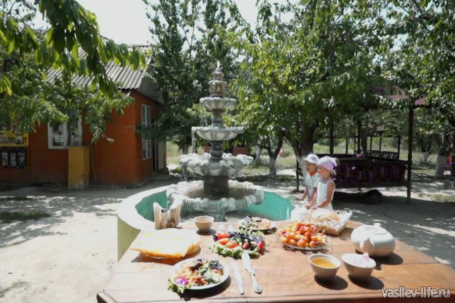 Ферма «Чудо ослик» в Залесном, площадка с фонтаном у кафе