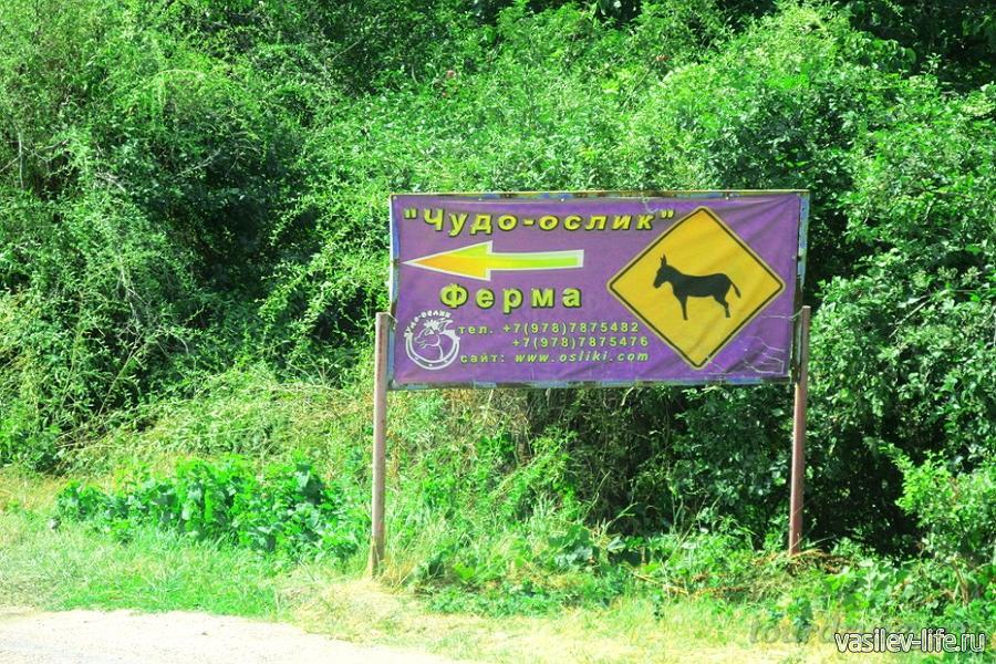 Ферма «Чудо ослик» в Залесном, указатель