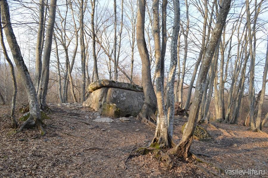 Хаджохский дольмен в Каменномостском (Адыгея) (11)