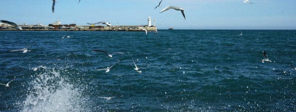 Черное море в Крыму в марте