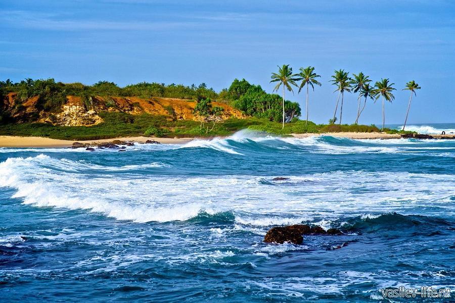 Шри-Ланка в январе