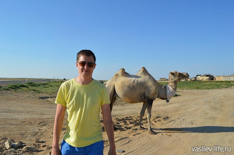 Пустыня в Казахстане